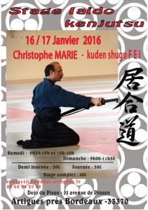 Stage Christophe MARIE Iaido-Kenjutsu (2016-01-16 et 17)